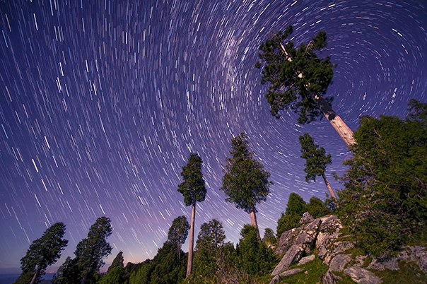 nick_hall_alerce_star_trail_web01.jpg